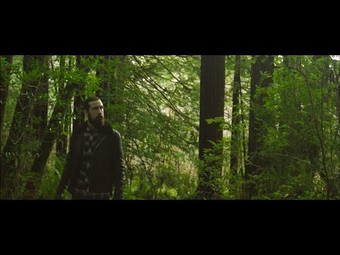 FIELDS AND PIER - AVRIEL & THE SEQUOIAS