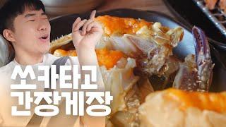 쏘카타고 팔당 드라이브  간장게장먹고 핵맛 뚱카롱 사…