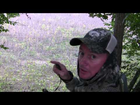Mississippi Hunting Club Cull Buck