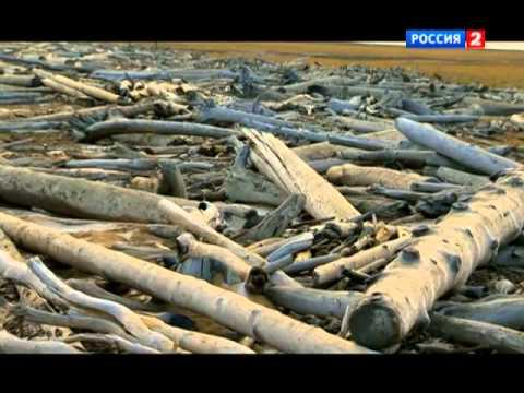 Русская Арктика. Новосибирские острова. Загадки земли мамонта