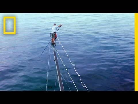 Harpoon Heroes | Wicked Tuna