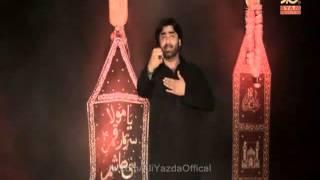 Hai Abbas Nahi - Ali Yazdan Rizvi - Nohay 2015-16