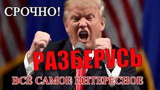 Дональд Трамп Разберется в ситуации в России