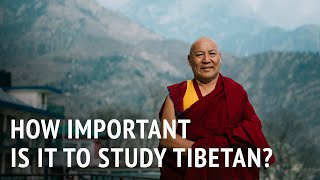 Geshe Lhakdor – How Important is it to Study Tibetan?