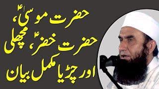 Story of Hazrat Khizar (AS),  Hazrat Musa (AS), Fish & Sparrow Full Bayan by Maulana Tariq Jameel