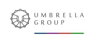 Оценка налоговых рисков. Umbrella Group.