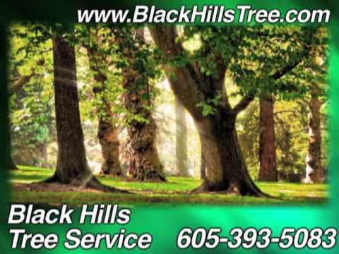 Black Hills Tree Service, Rapid City, SD