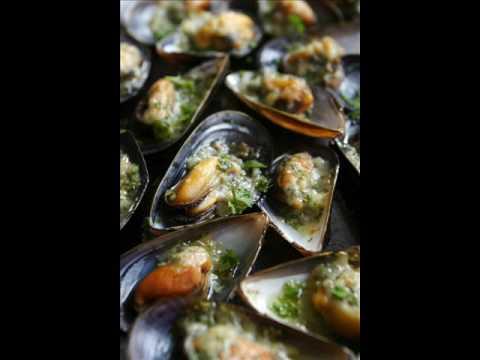 Mollusks Song