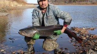 Рибалка в Монголії. Річка Онон-Гол.