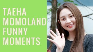 Taeha (MOMOLAND) Funny Moments