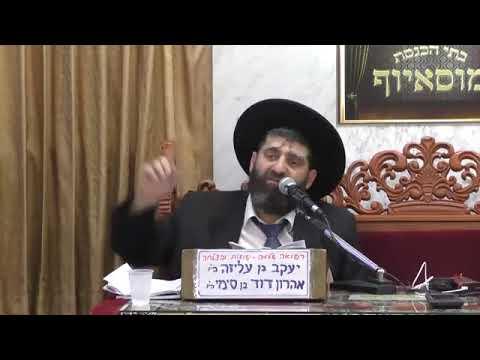 הרב אייל עמרמי פרשת נח מוסאיוף