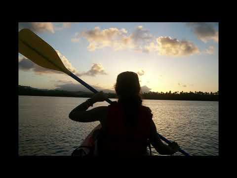 Bio Bay Tours in Puerto Rico 🚣🇵🇷