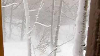 Gambar cover Blizzard in Kluane!  Extreme weather in Yukon Territory, Canada.