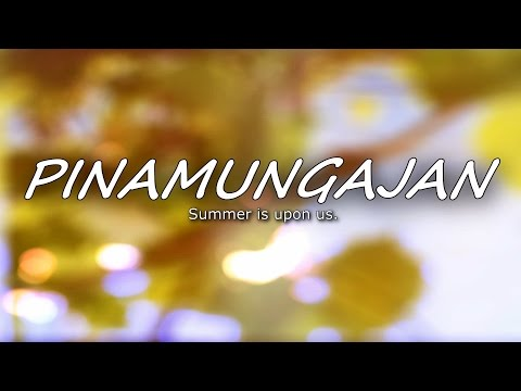 PINAMUNGAJAN 2016 | Summer is upon us.