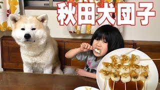 grandchild and Akita Inu German Shepherd dog 孫達と息子嫁さん達で秋...