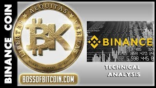 Binance BNB 🔥 Top Altcoins 2019 | BTC USD | Free Bitcoin Price Technical Analysis & Crypto News