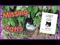 What to Do When Your Cat Goes Missing! How to Find a Lost Cat!