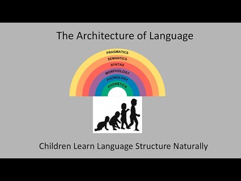 CARTA: How Language Evolves: Language in The Brain