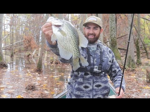 AWESOME Slab Crappie CATCH And COOK!!!