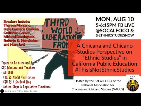 A Chicana And Chicano Studies Perspective On