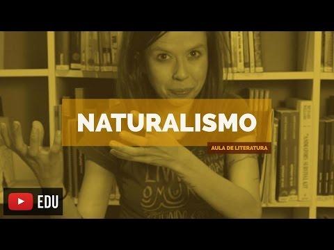 Literatura Brasileira: Naturalismo (Aula 11)