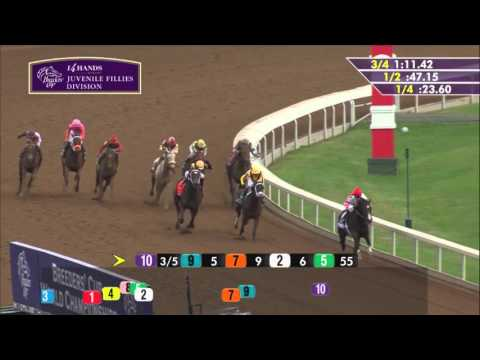 2015 Breeders' Cup Juvenile Fillies (G1) - Songbird