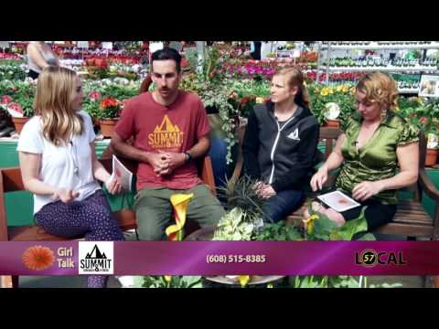 Girl Talk | Summit Strength & Fitness | Episode 384 | 5/11/17