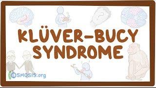 Klüver-Bucy syndrome - causes, symptoms, diagnosis, treatment, pathology