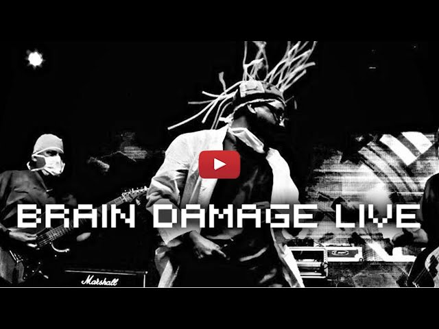 The MDs ::Brain Damage ::Live