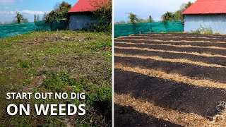 How To Start A No Dig Garden (From Start to Finish)
