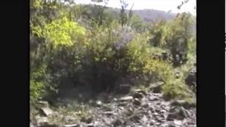 Exploring Bowden Cave (near Elkins WV - October 14 1998)