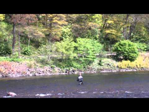 Fishing River Tay Dunkeld Perthshire Scotland May 20th