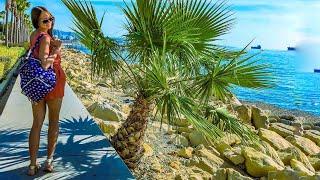 Отдых на Кипре, cyprus, лимассол, цены Кипр, приключения, пляжи Лимассол, пора валить на море, тур