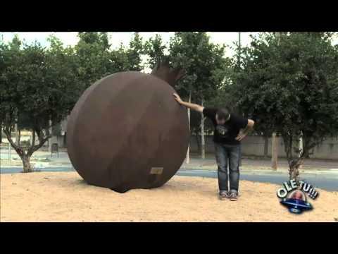 TV3 - Alguna pregunta més? APM - Ole Tu a Lleida
