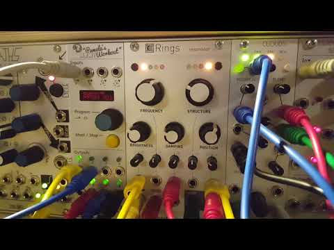 Mutable Instruments - Rings into Clouds - lovely couple