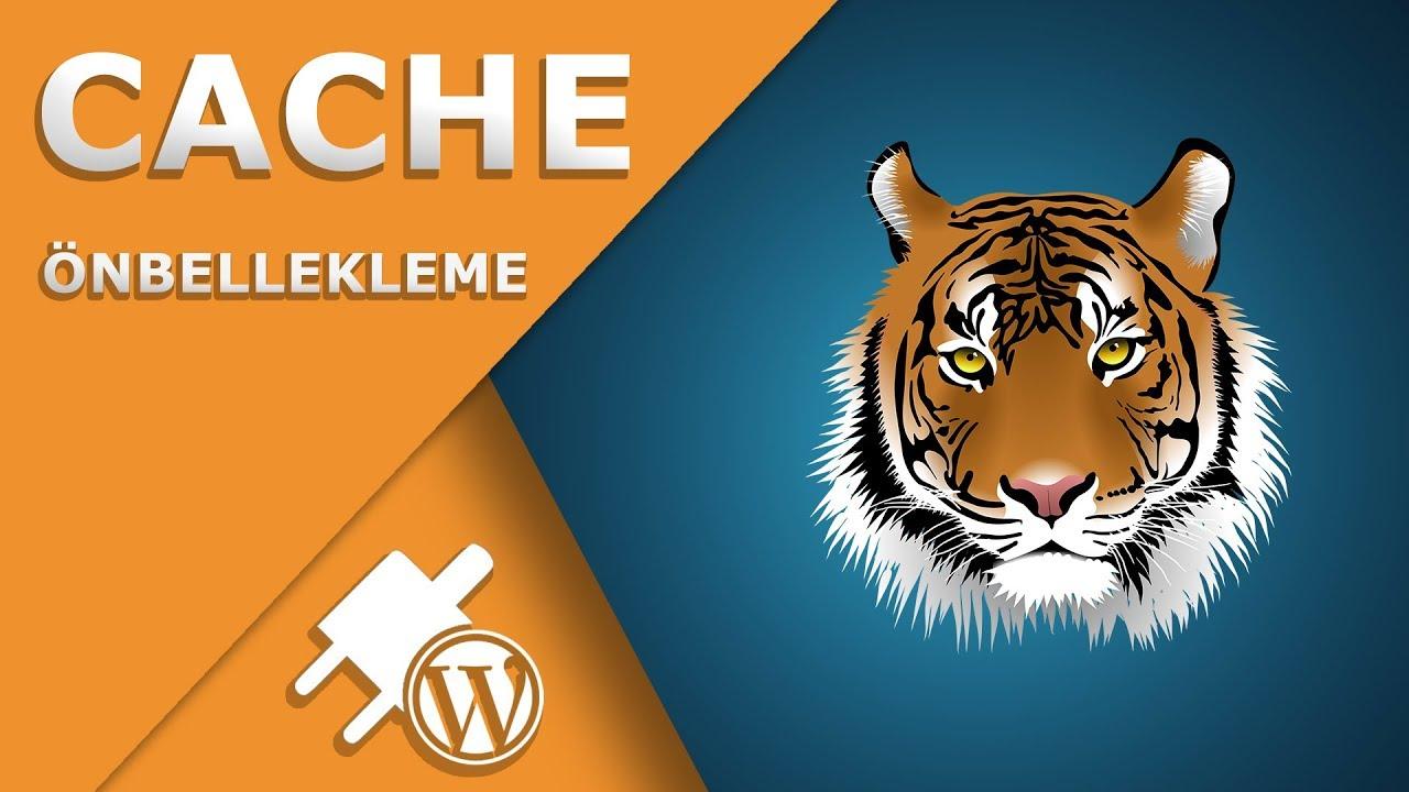Wordpress Cache Kurulumu ve Ayarları - Fastest Cache