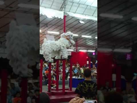 Lion Dance Competition Singapore