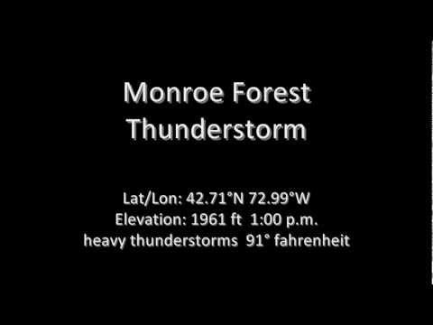 Monroe Forest Thunderstorm