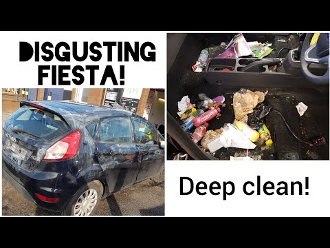 cleaning-a-disgusting-ford-fiesta-car-disaster-detail!