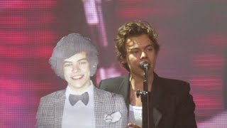 Harry Styles with his cardboard cutout during What Makes You Beautiful- Mannheim concert.