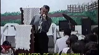 Espiritu Santo En Forma De Paloma