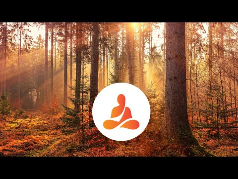 Relaxing Piano Music, Nature Sounds, Music Therapy, Calm Music, Stress Relief, Spa Music 🖤10