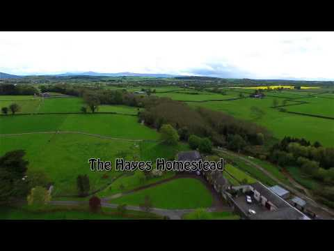 Hayes Rathcoole Ireland