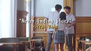 Stray Kids (스트레이 키즈) - Never Ending Story 끝나지 않을 이야기 sub indo (Extraordinary you OST) [FMV]