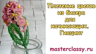 Плетение цветов из бисера для начинающих. Гиацинт: подробный видео урок