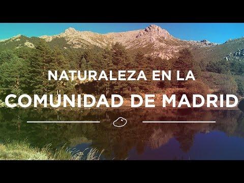 Un día de naturaleza en la Comunidad de Madrid