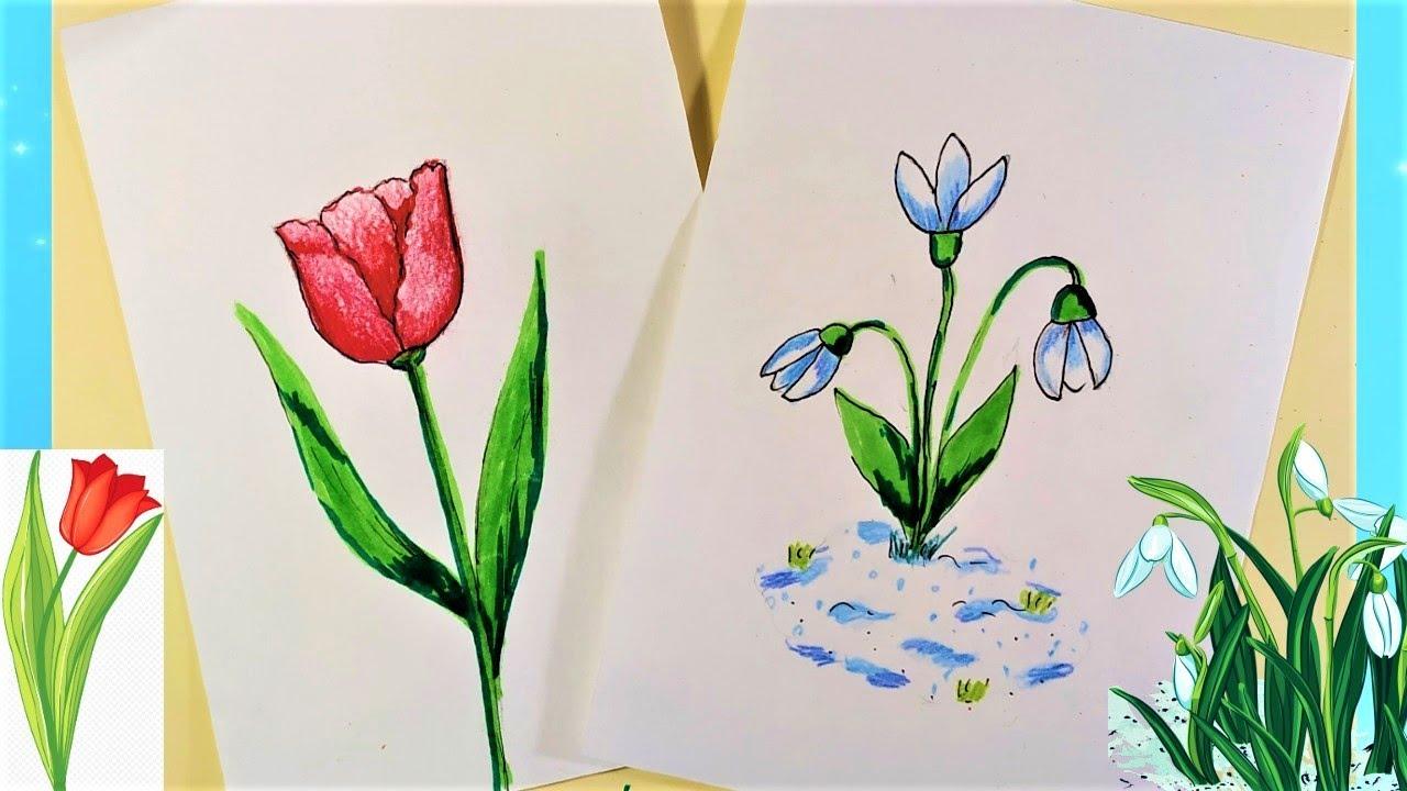 Как нарисовать подснежник и тюльпан на 8 марта. Простые рисунки. Easy drawing.
