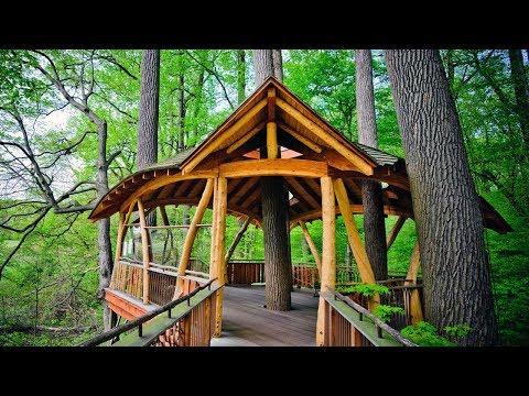 best-tree-houses-ideas-on-pinterest