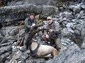 Bezoar Ibex Hunting in Akseki_TURKEY Recep ECER - HALİL GÜLÇUR _