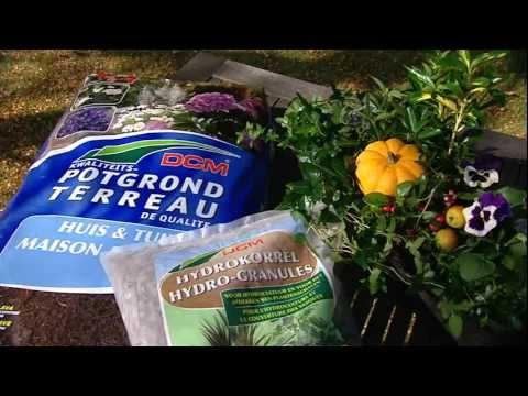 Astuce de jardin Floralux: Composer des jardinières d ...